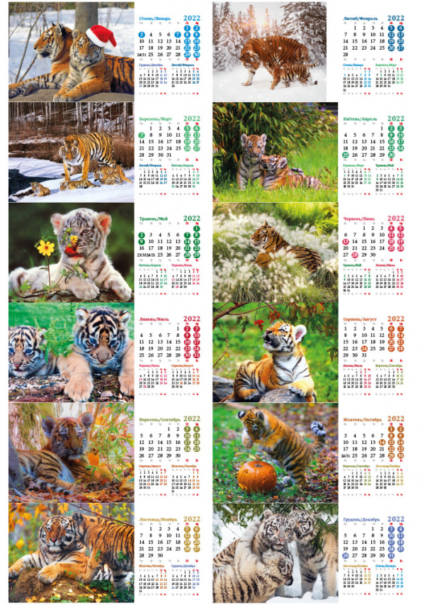 Блочки для календарей домиков с тиграми